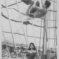 Circus: Trampoline Act.