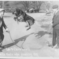 Lovell Farm, Etc.: Jumping Dog with Lovell Boys.
