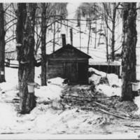 Sugaring: Stoddard Sugar House.