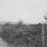 Country Road. Saxtons River Area. About 1898.